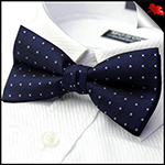 Mens Midnight Blue with Stars Bow Tie