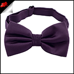Boys Grape Eggplant Bow Tie
