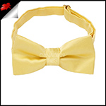 Light Gold Yellow Boys Bow Tie