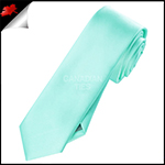Mens Light Mint Green Tiffany Plain Skinny Necktie